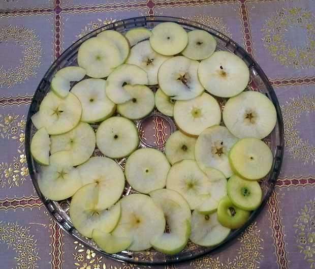 Listići jabuke